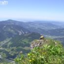 Kanisfluh Ebene vor Gipfel